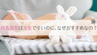 母乳育児は大変で辛い?母乳トラブルやストレスがあってもミルクより母乳が勧められる理由。