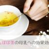 たんぽぽ茶の母乳への効果効能。授乳期におすすめのノンカフェインハーブティー。